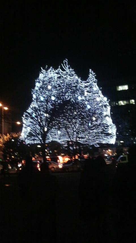 20111223  2011SENDAI光のページェント.jpg