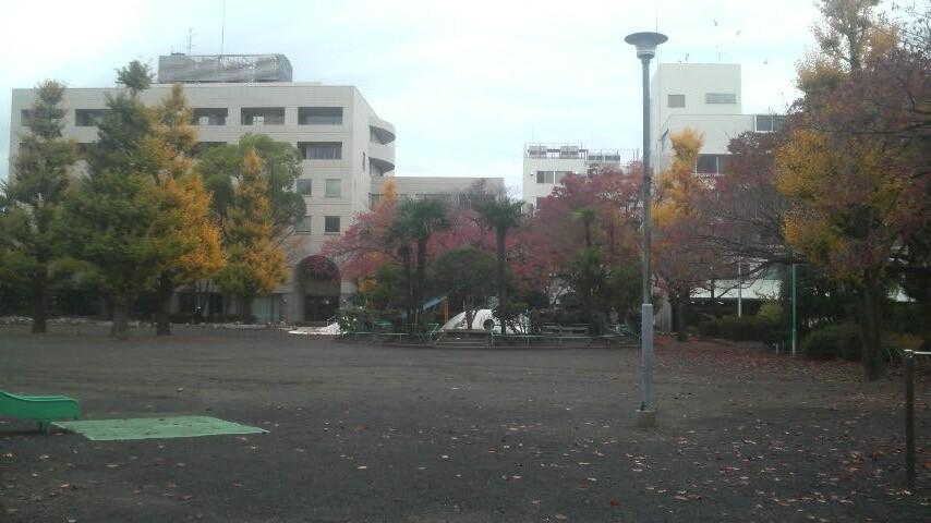 14.11.28鷹匠公園の紅葉はこ~よ~。.jpg